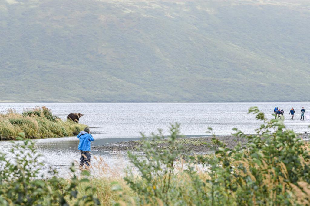wycieczka niedźwiedzie brunatne Alaska