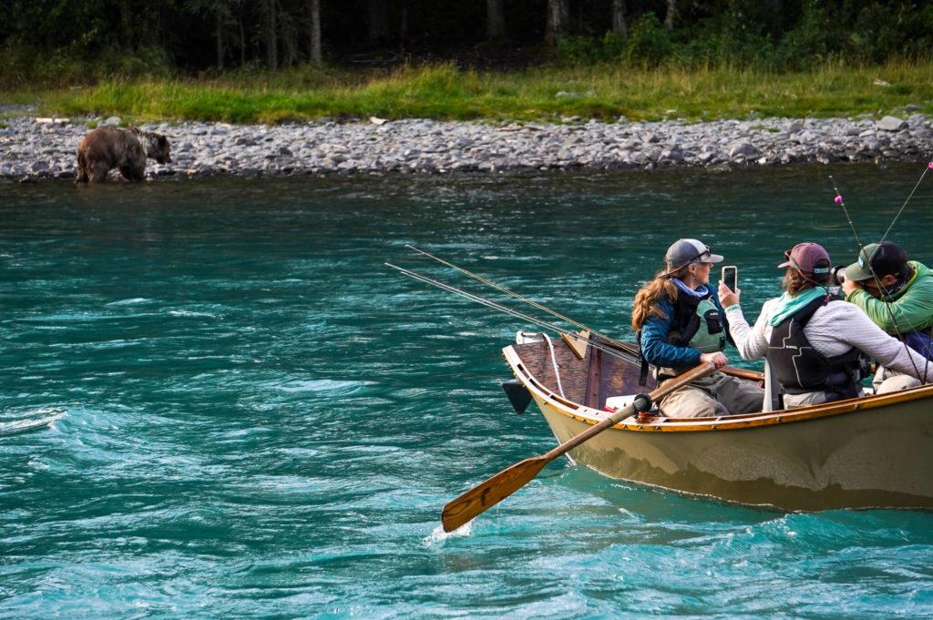 Obserwacja niedźwiedzia na rzece Kenai na Alasce z małej łódki