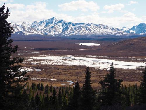 Park Narodowy Denali